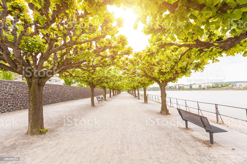 Empty footpath along Rhine river in Bonn stock photo