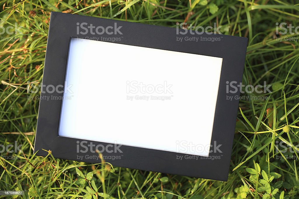 Empty Frame on Grass royalty-free stock photo