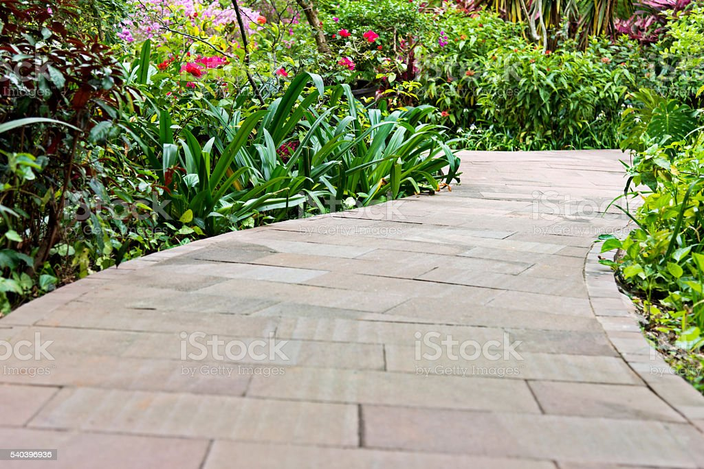 Empty garden with walkway stock photo