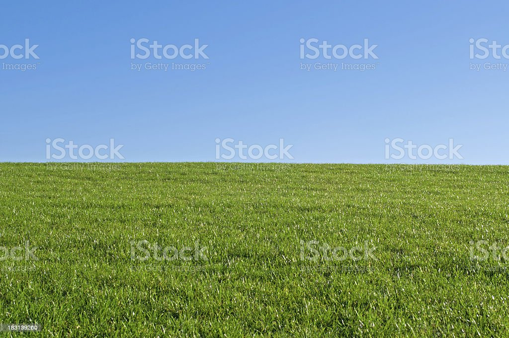 empty grassland and blue sky - background for composition royalty-free stock photo
