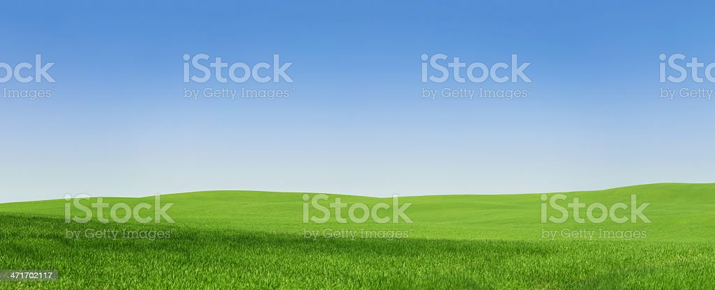 Empty green field, 108 Mpix stock photo