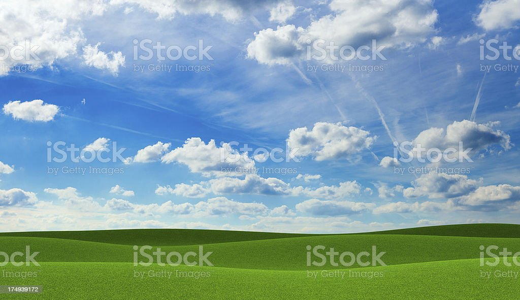Empty green field of grass royalty-free stock photo