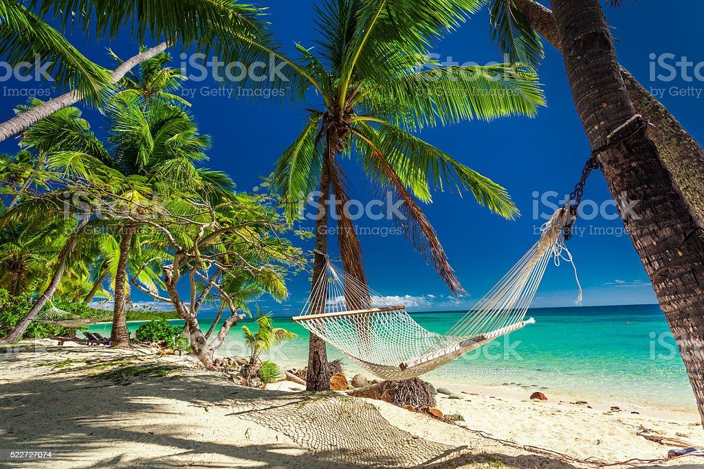 Empty hammock in the shade of palm trees,  Fiji stock photo