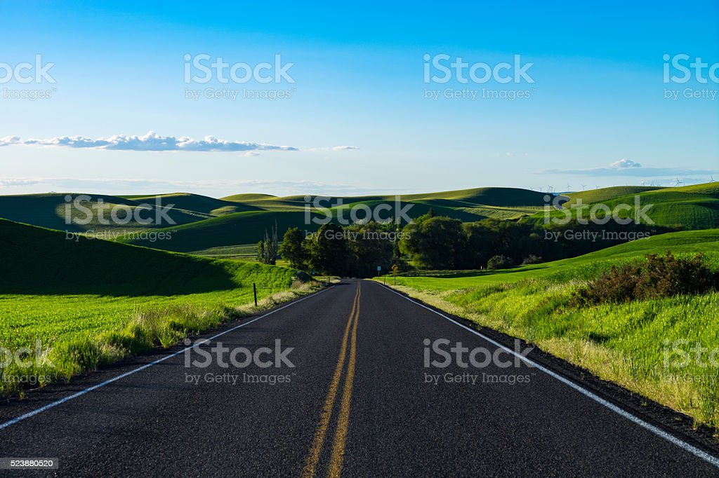 Empty highway in wheat fields of Eastern Washington state stock photo