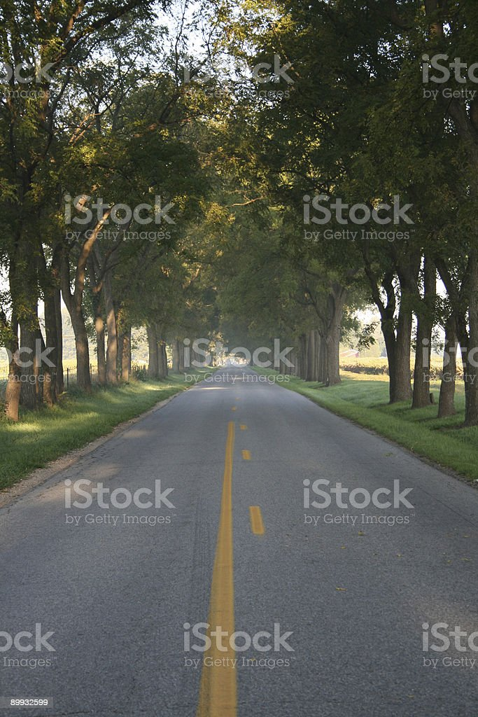 Empty morning road stock photo