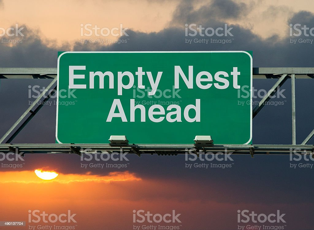 Empty Nest Ahead stock photo