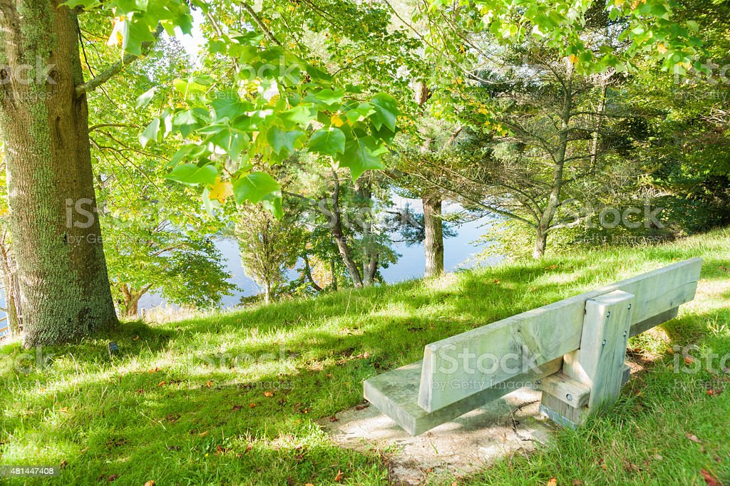 Empty park beanch seat overlooking lake through trees. stock photo