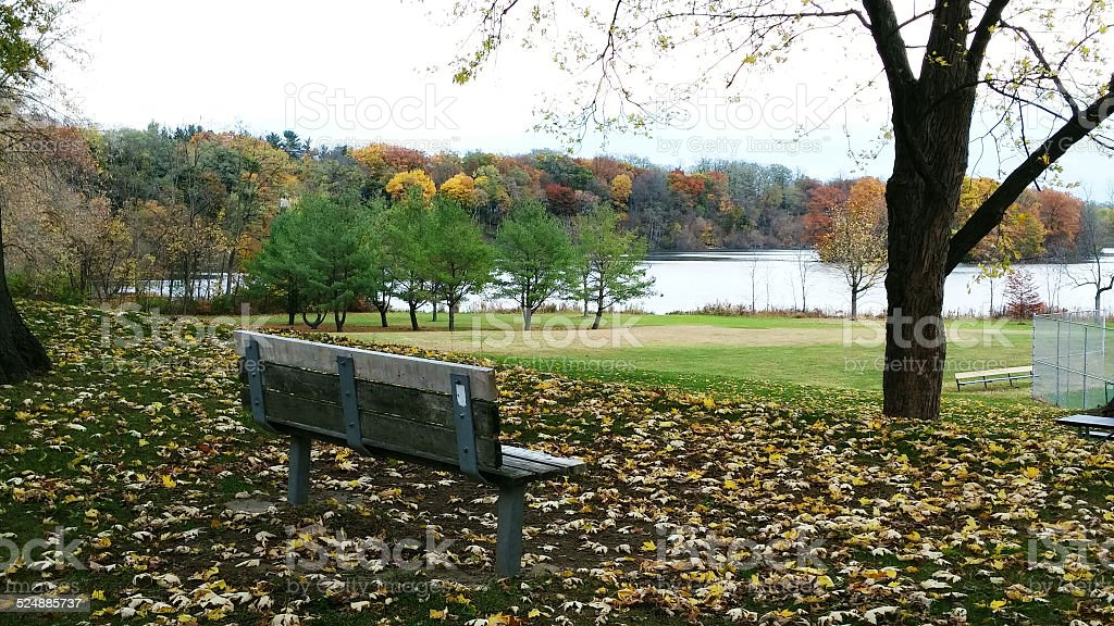 Empty Park Bench in Fall at Collins Park, Scotia, NY stock photo