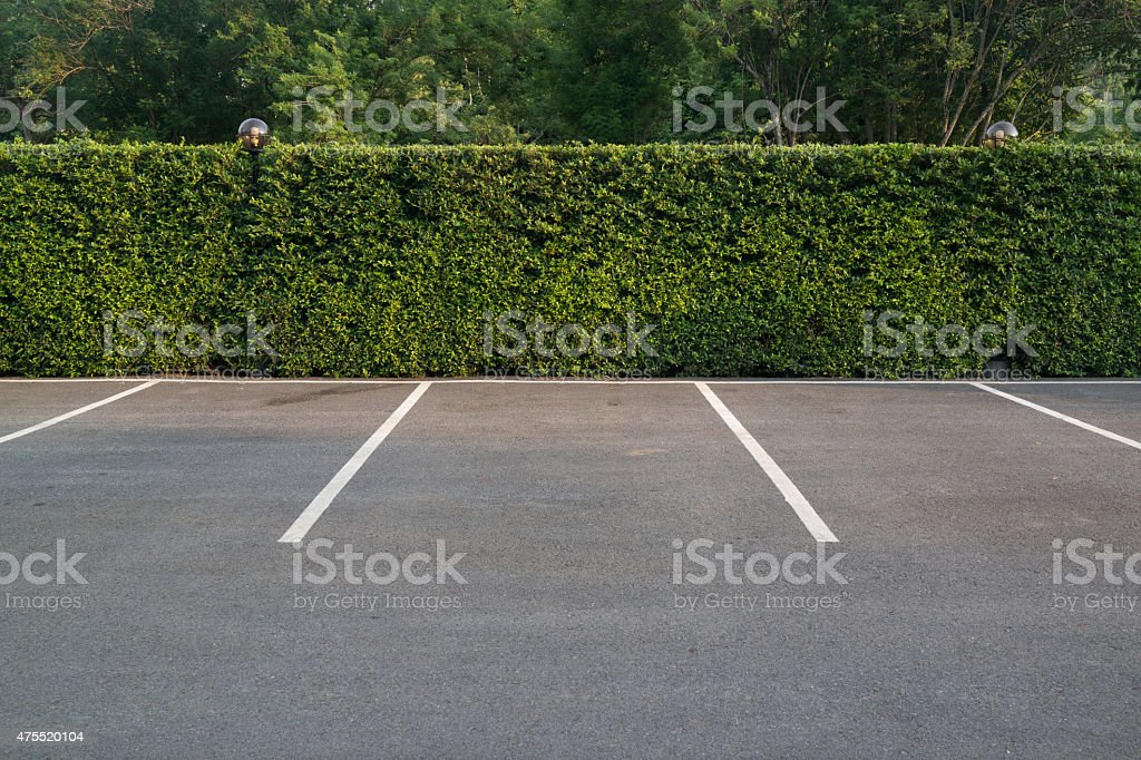 Empty parking lot with foliage wall in the background stock photo