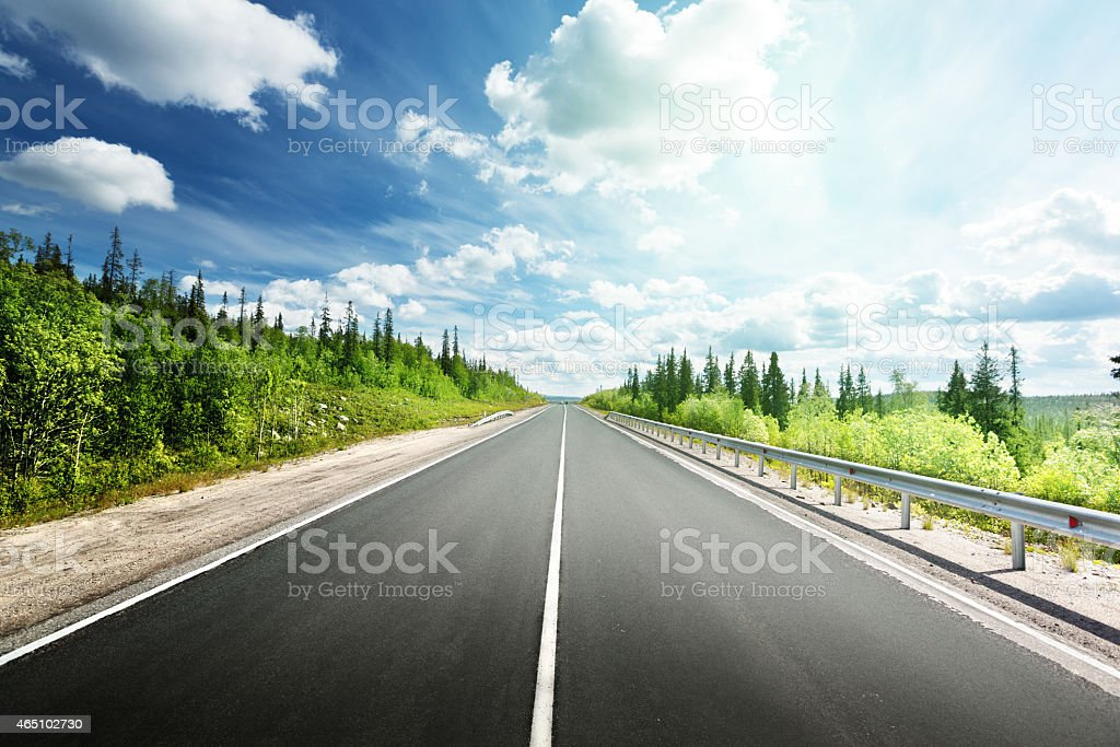 Empty paved road with trees on both sides in North Forest, stock photo
