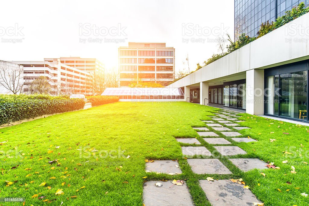 empty pavement in grassland and modern office buildings at sunrise stock photo