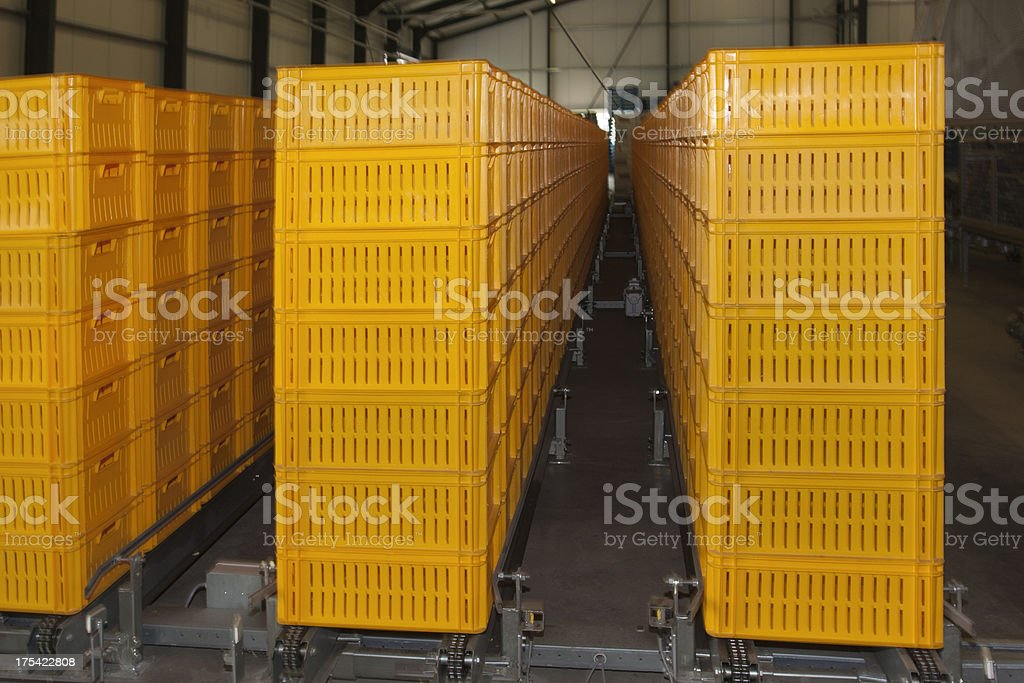 Empty Plastic Crates inside of Greenhouse royalty-free stock photo
