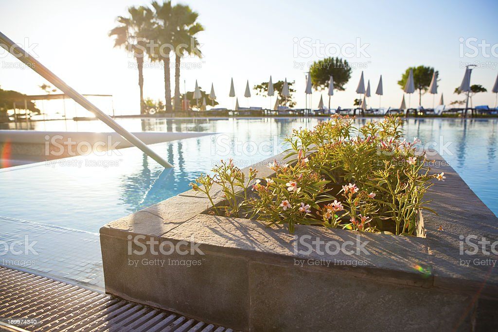 Empty pool area early in the morning royalty-free stock photo