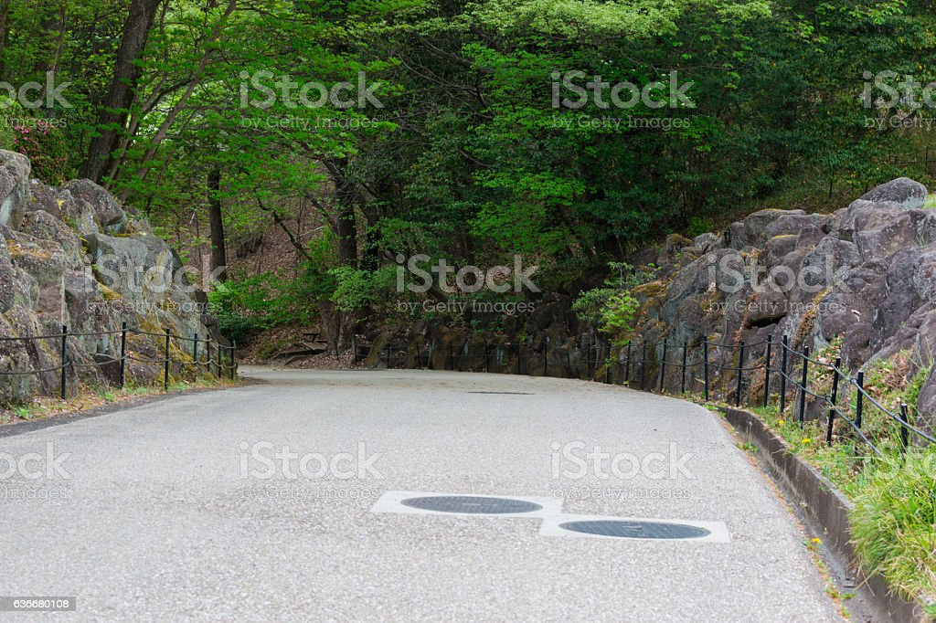 Empty road in forest on mountain mystery. stock photo
