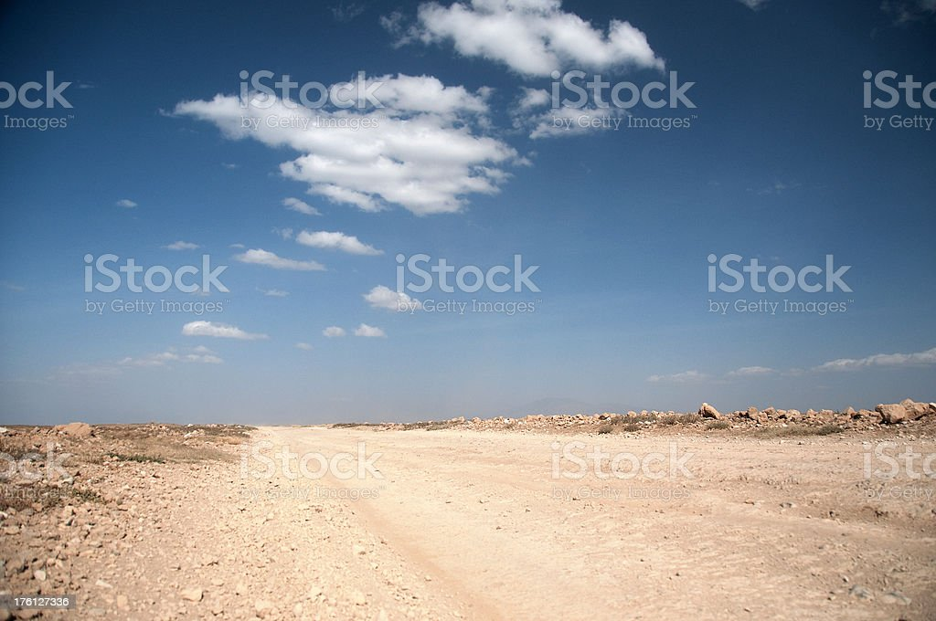 Empty road in the Wilderness royalty-free stock photo