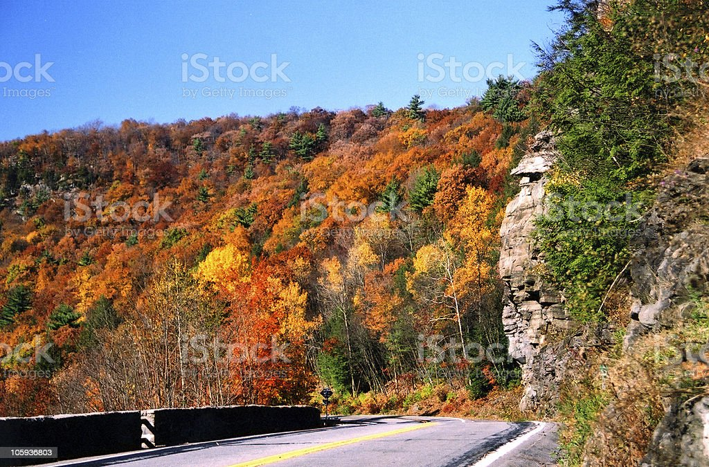 Empty road leading to colorful autumn trees royalty-free stock photo