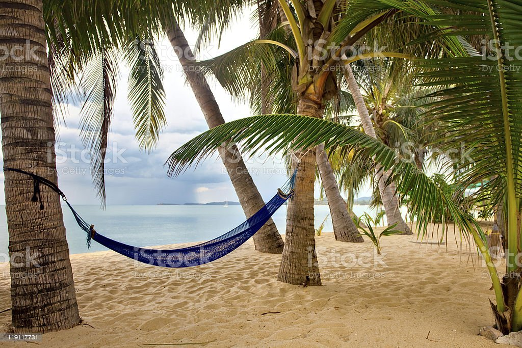 Empty sand beach with some palm and hammock royalty-free stock photo