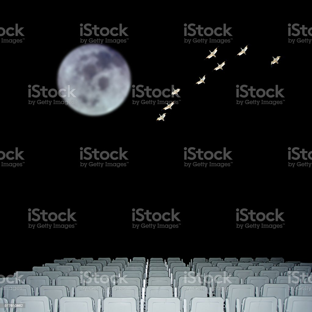 Empty seats with snow geese and the moon in background stock photo