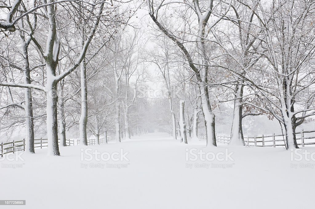 Empty snow covered road royalty-free stock photo