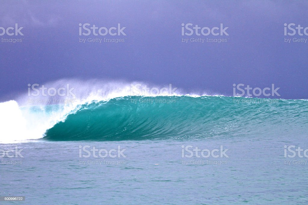 Empty speedblur wave in the tropics stock photo