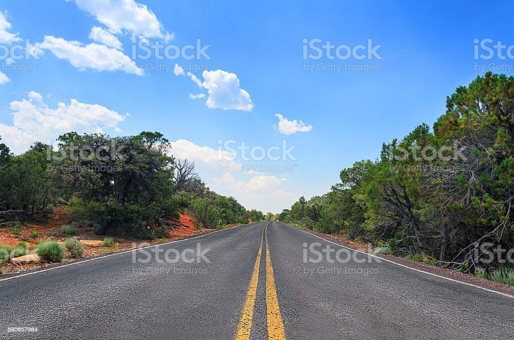 Empty straight road, Grand Canyon, Arizona, USA stock photo