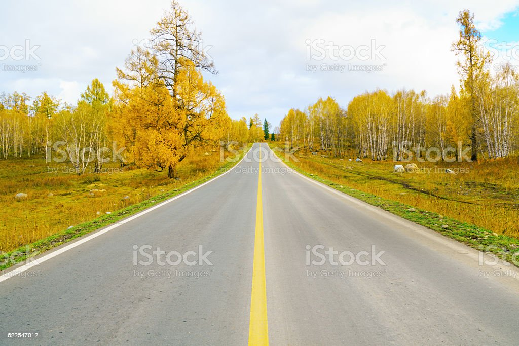 Empty straight road in the fall stock photo