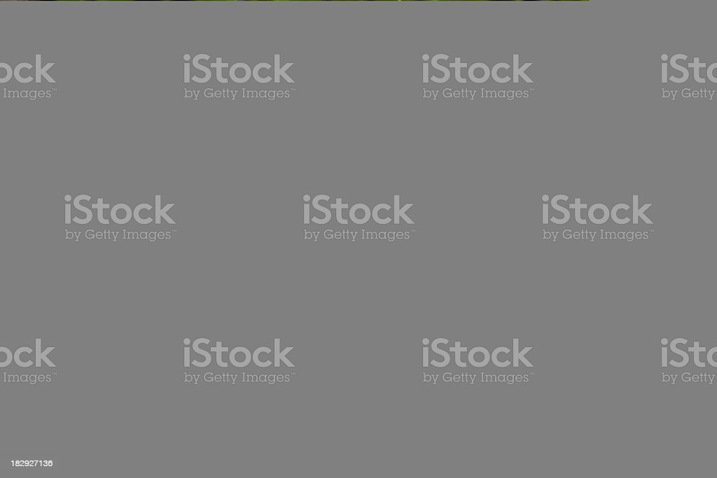 Empty theater-seat college lecture hall royalty-free stock photo