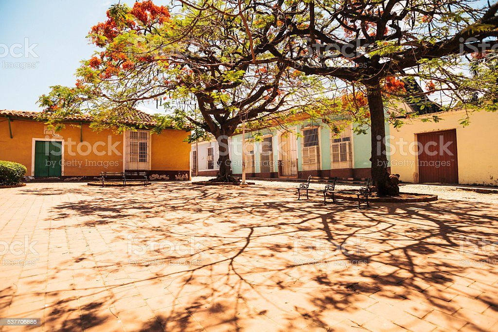 Empty town square with blossom trees, Trinidad, Cuba stock photo