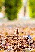 Empty wicker basket on golden autumn leaves in forest
