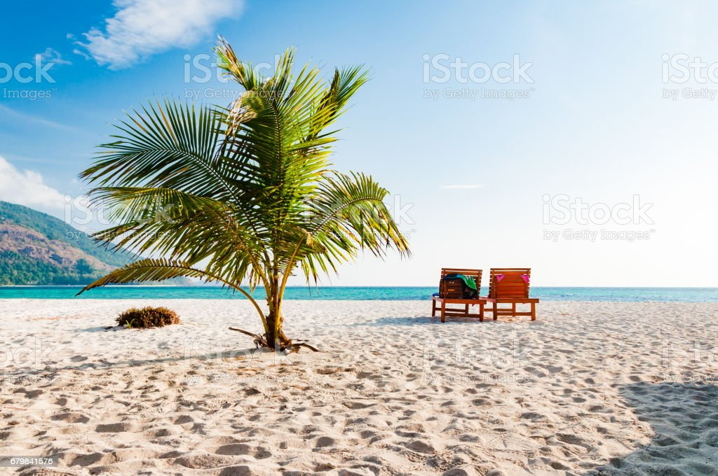 Empty wooden beach chair on the beach with coconut tree in Phuket, Thailand stock photo