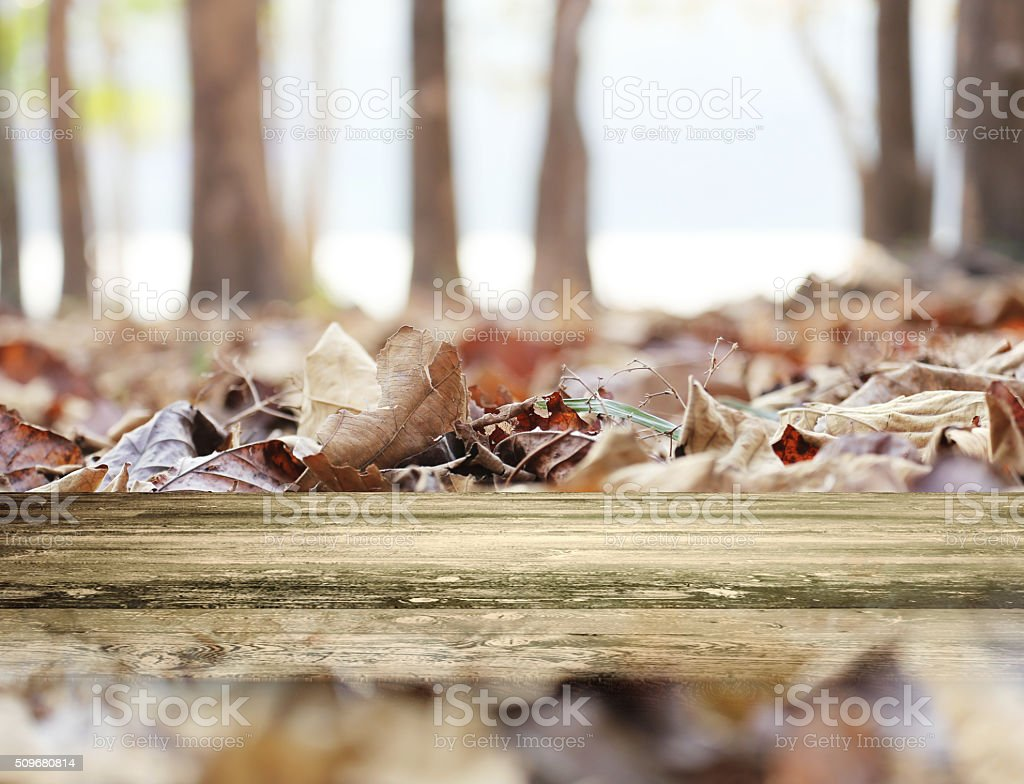 Empty wooden  for Your photomontage. stock photo