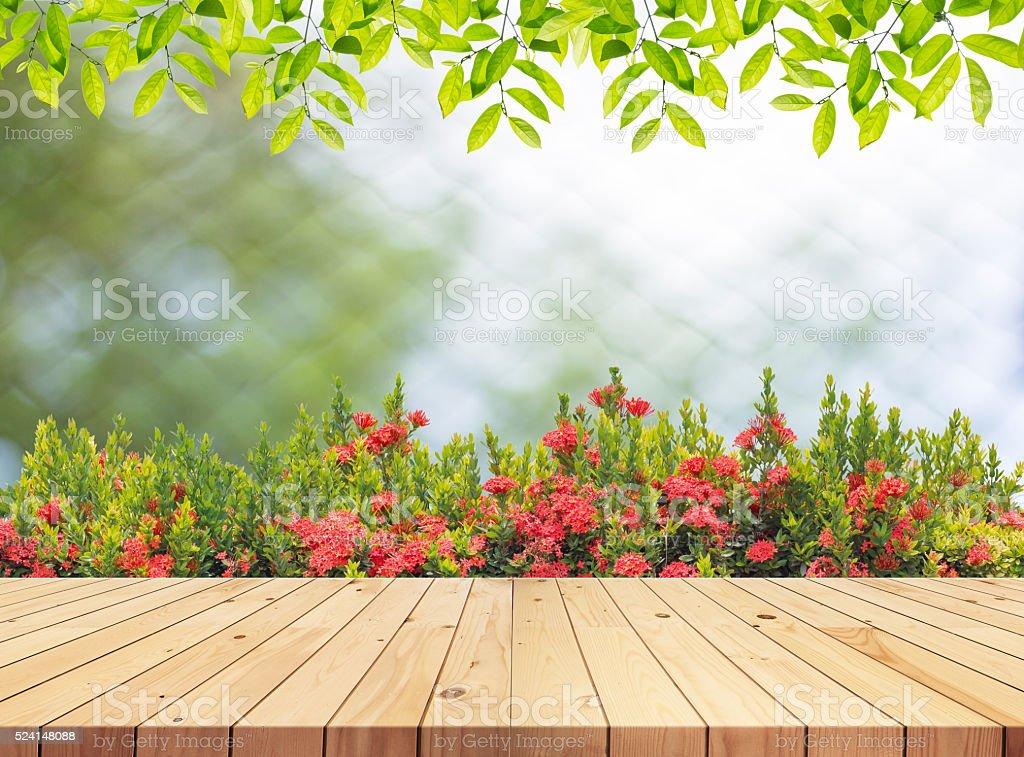 Empty Wooden table on garden. stock photo