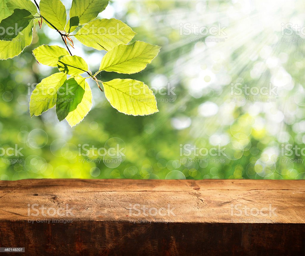 Empty wooden table set around nature stock photo