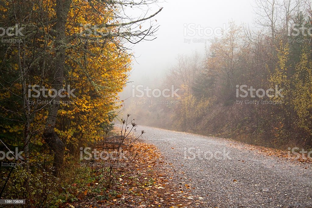 Emtpy road in autumn royalty-free stock photo