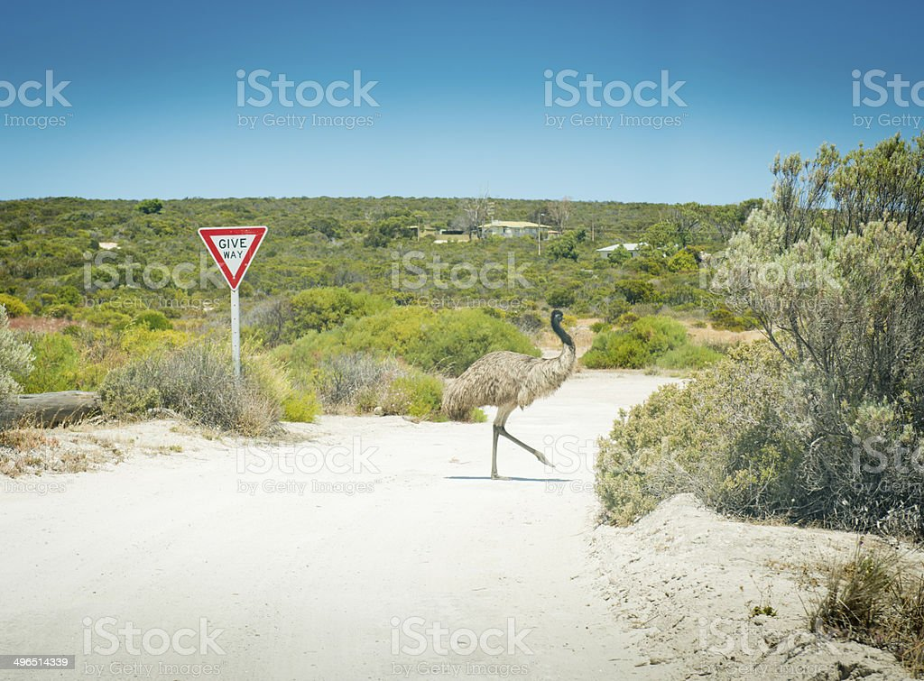 Emu Give Way Sign stock photo