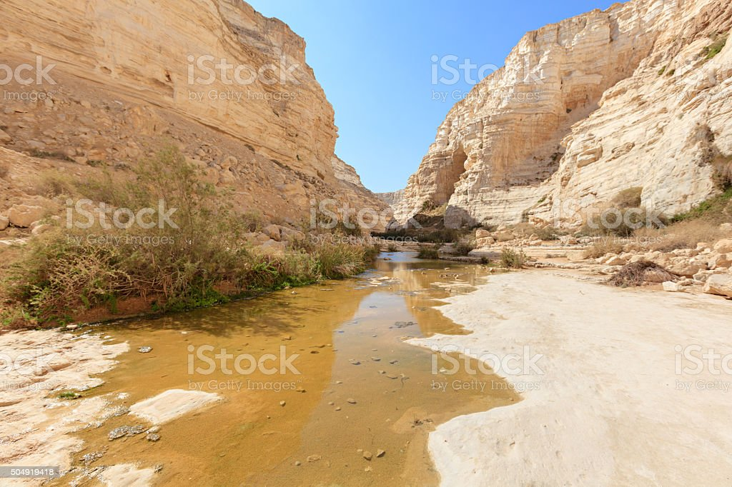 En Avdat National Park, Desert Negev, Israel stock photo
