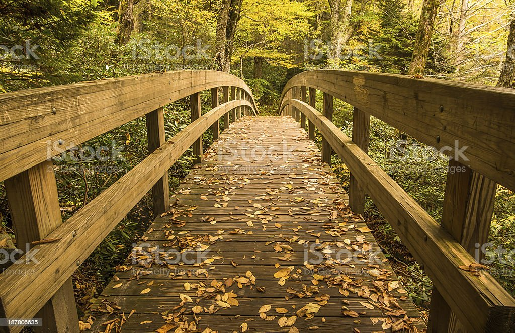 Enchanted Bridge stock photo