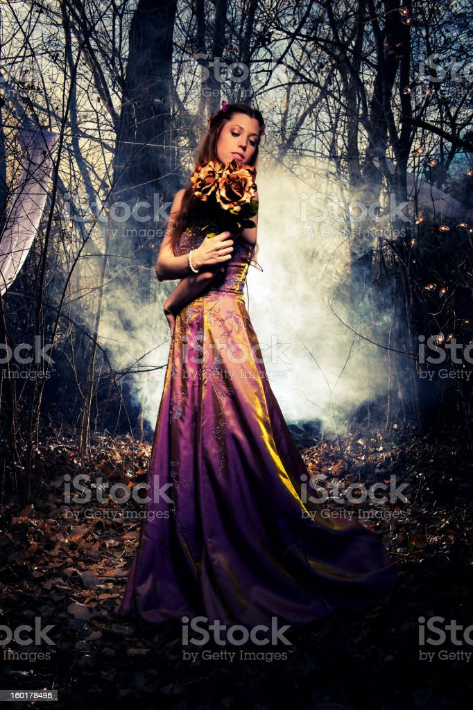 Enchanted Flowers royalty-free stock photo