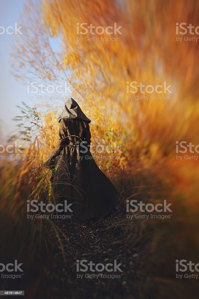 Enchantress stock photo