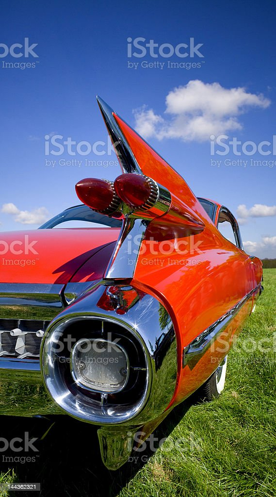 Red Fin stock photo