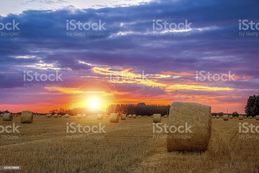 End of day over field with hay bale stock photo