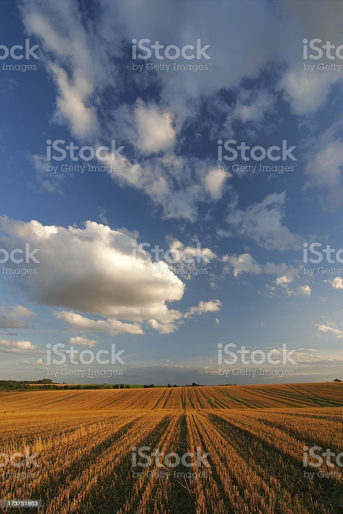 End of day royalty-free stock photo