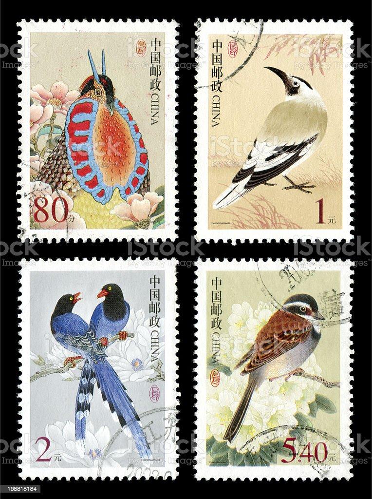 Endangered birds royalty-free stock photo
