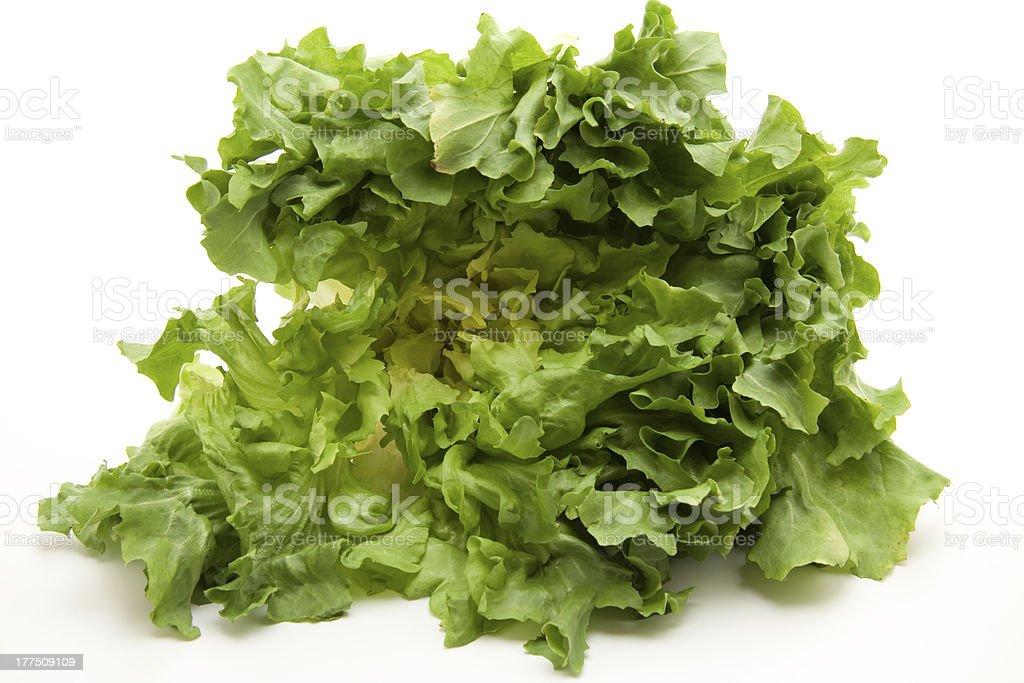 Endives salad royalty-free stock photo