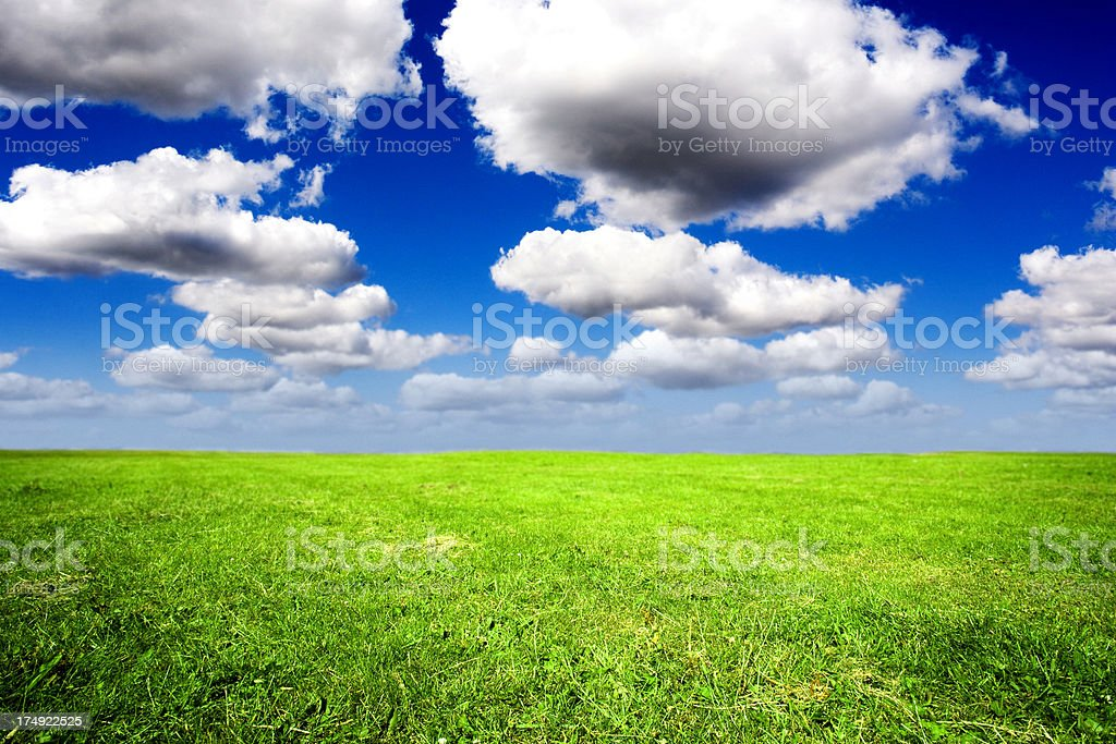Endless Green Field royalty-free stock photo