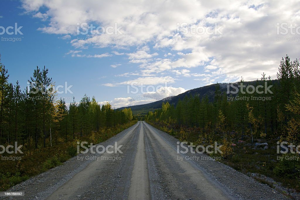 Endless road in Sweden royalty-free stock photo