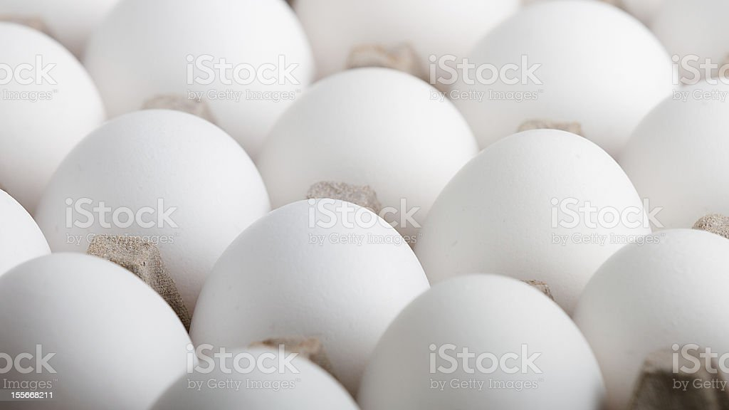 Endless rows of eggs up close royalty-free stock photo