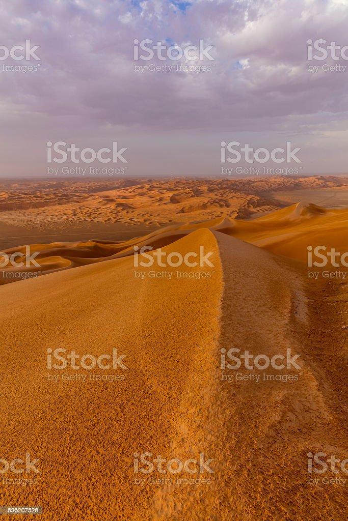 Endless Rub'al Khali right after the Rain stock photo