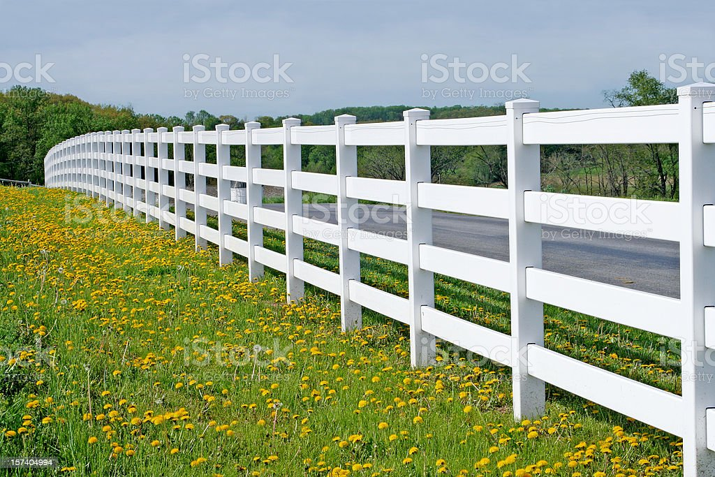 Endless White Fence stock photo