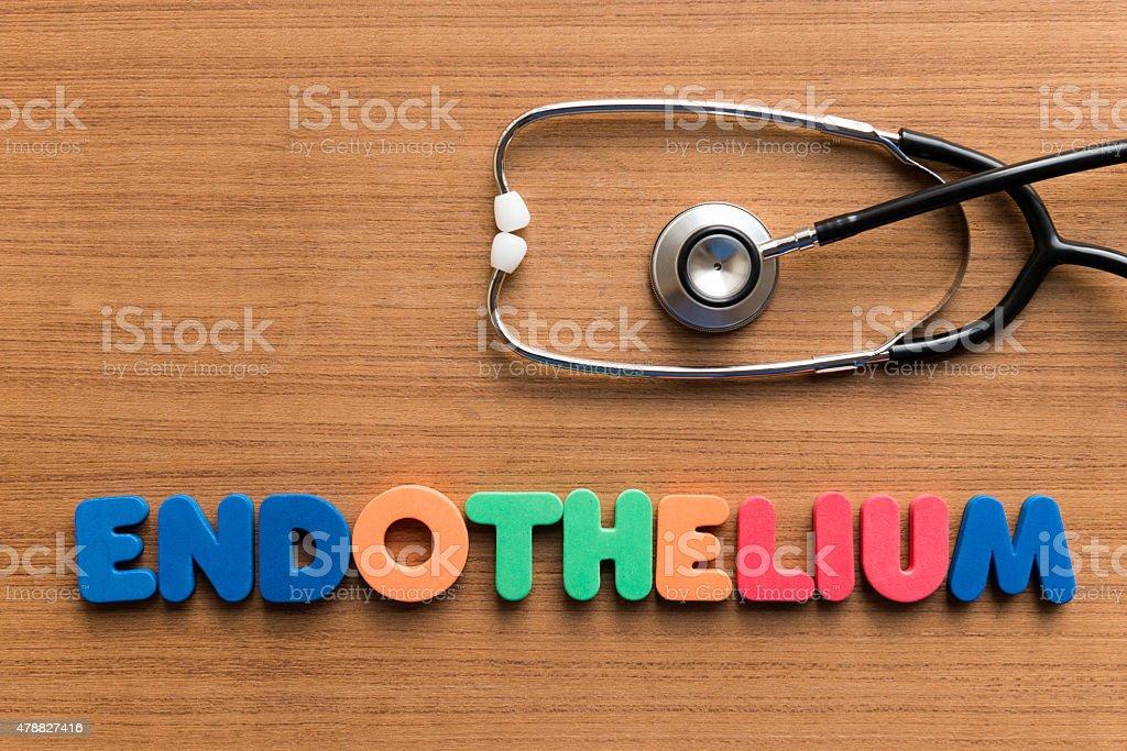 endothelium stock photo